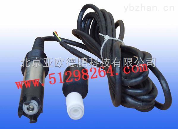 DP-100MG-100毫克级工业溶解氧电极/工业溶解氧电极
