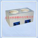 二联式调温磁力搅拌电热套/磁力搅拌电热套