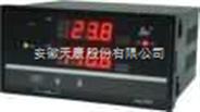 雙回路數字顯示控制儀/光柱顯示控制儀