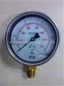LR进口压力表PG210100A