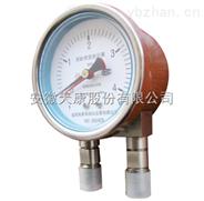供應天儀牌YZS-100、150型雙針差壓表,安徽天康股份有限公司