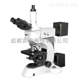 NMM-800TRF-供应成都全自动聚焦金相显微镜NMM-800TRF