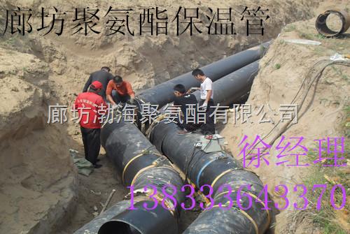聚氨酯保温管生产厂家,钢套钢保温管供应商
