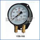 双针双管压力表,YZS-102双针压力表