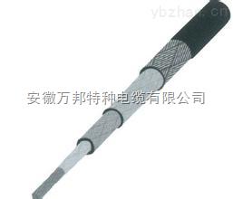 安徽串联式伴热电缆