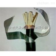 KVVP22安徽天康控制電纜