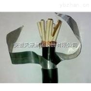 安徽天康控制電纜