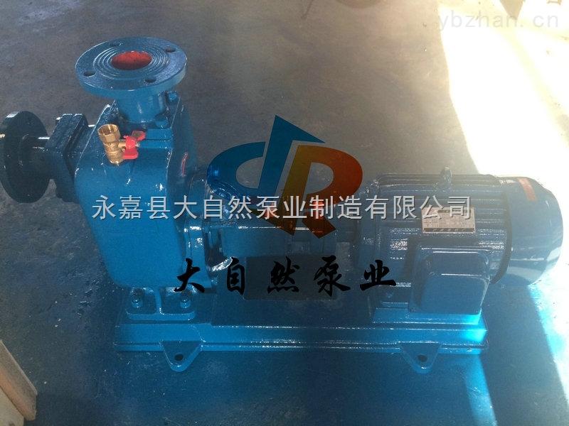 供应80ZX40-22防腐自吸泵