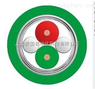 西门子绿色双芯电缆