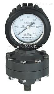 耐腐塑料隔膜压力表