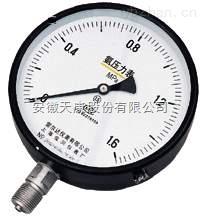 YA-100氨壓力表YA-150