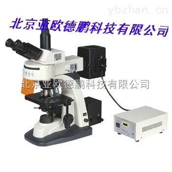 DP-300-熒光顯微鏡(四色激發)/顯微鏡