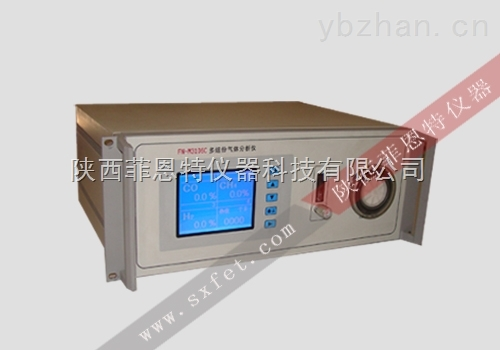 FN315C煤气分析仪