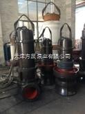 天津轴流泵,轴流泵使用,潜油式轴流泵