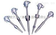 WZPK2-336安徽天康防水式双支铠装铂热电阻