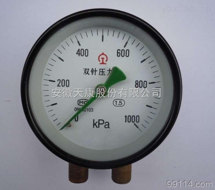 YZS-102-雙針壓力表