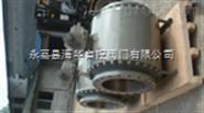 DN300Q347Y固定式硬密封球阀
