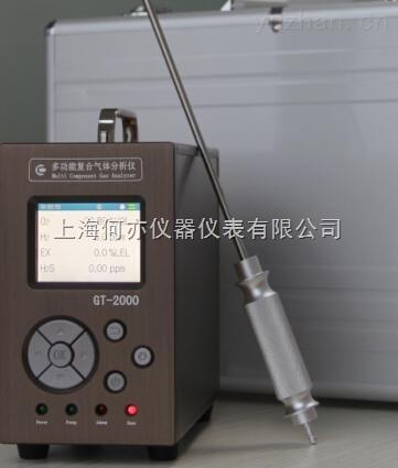 GT-2000-O2多功能氧气复合气体分析仪