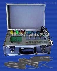 多功能電能表現場校驗儀 型號:SKY-AM3庫號:M172377
