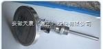 安徽天康生产数字显示式双金属温度计