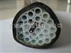 天康牌伴热采样管自控温伴热采样管 环保用分析防腐采样伴热复合管