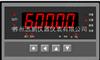 迅鹏力值显示控制仪SPB-CHB