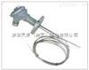 安徽天康WRE-230D多点热电偶