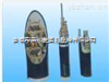 安徽天康ZR-KVVP  5*1.5阻燃控制电缆