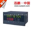 供求流量积算仪SPB-XSJ系列