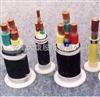 出售(世纪天康)0.6/1KV交联聚乙烯绝缘变频电缆多少钱-货期短